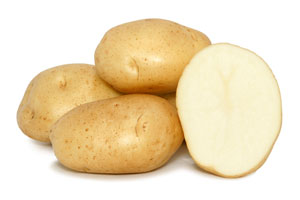 Kennebec White Potato